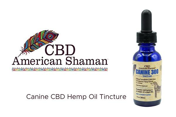 american shaman cbd oil